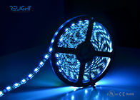 RGB 3 In 1 Color 5050 RGBW LED Strip Lights 10w/m 60pcs waterproof rgb led strip supplier