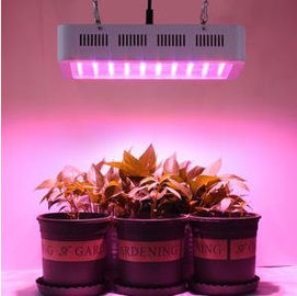 China Hydroponics Square Led Grow Lamps , 5 Year Warranty Led Full Spectrum Grow Lights For Flowering distributor